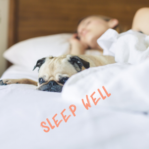 "Woman asleep in her bed with dog.   Text reads ""sleep well"".  Sleep improves wellness."